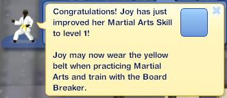 JoyMartialArts